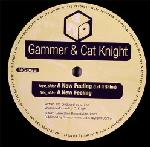 Cover: Gammer Ft. Cat Knight - A New Feeling (Let It Shine)