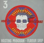 Cover: Wasting Program - You Have Nothing Left But Destruction