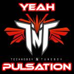 Cover: TNT - Pulsation