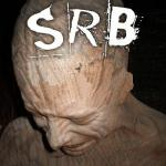 Cover: SRB - Everything Is Fucked