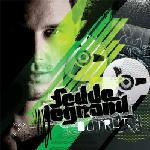 Cover: Fedde Le Grand feat. Camille Jones - Shotgun