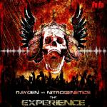 Cover: Rayden - The Experience