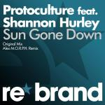 Cover: Protoculture feat. Shannon Hurley - Sun Gone Down (Original Mix)