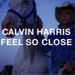 Cover: Calvin Harris - Feel So Close (Extended Mix)