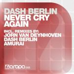 Cover: Dash Berlin - Never Cry Again (Original Vocal Mix)