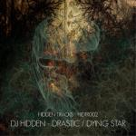 Cover: DJ Hidden - Dying Star