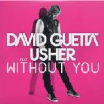 Cover: David Guetta - Without You (Original Version)