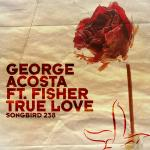 Cover: George Acosta feat. Fisher - True Love (Radio Edit)