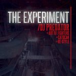 Cover: Art of Fighters - The Experiment