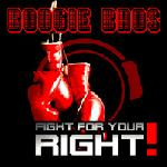 Cover: Boogie Bros - Fight for Your Right (RainDropz! Bootleg Remix)