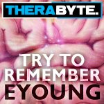 Cover: Eyoung - Try To Remember