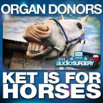 Cover: Organ Donors - Ket Is For Horses (Original Mix)