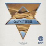 Cover: Calyx & TeeBee Feat. Kemo - Pure Gold