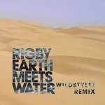 Cover:  - Earth Meets Water (Wildstylez Remix)