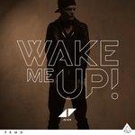 Cover: Avicii feat Aloe Blacc - Wake Me Up