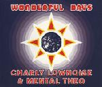 Cover: Charly Lownoise - Wonderful Days (Hard Mix)