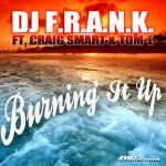 Cover: Dj F.R.A.N.K. - Burning It Up