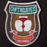 Cover: Flo Rida - Can't Believe It