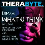 Cover: Dimavi - Fear Of The Dark (Revertigo)