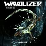 Cover: Wavolizer - Democracy