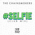 Cover: The Chainsmokers - #SELFIE (Club Mix)