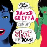 Cover: David Guetta feat. Skylar Grey - Shot Me Down
