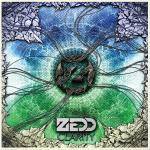 Cover: Zedd - Fall Into The Sky