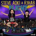 Cover: Steve Aoki - Flight