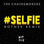Cover: The Chainsmokers - #SELFIE (Botnek Remix)