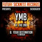 Cover: YmB , MathizM - Your Destination