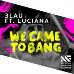 Cover: 3LAU - We Came To Bang