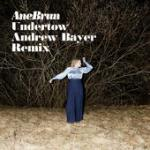 Cover: Ane Brun - Undertow (Andrew Bayer Remix)