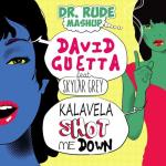 Cover: Dr. Rude - Kalavela Shot Me Down