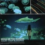 Cover: Bring Me The Horizon - Pray For Plagues