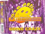 Cover: Rave Nation - Going Crazy