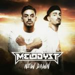 Cover: The Melodyst - New Dawn