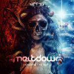 Cover: Meltdown - Surviving The Times