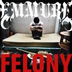 Cover:  - Felony