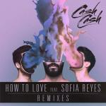 Cover: Cash Cash - How To Love (Boombox Cartel Remix)