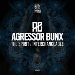 Cover: Agressor Bunx - The Spirit