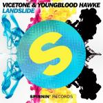 Cover: Vicetone & Youngblood Hawke - Landslide
