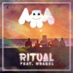 Cover: Marshmello feat. Wrabel - Ritual