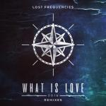 Cover: Lost Frequencies - What Is Love 2016 (Zonderling Extended Remix)