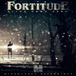 Cover: Fortitude - New Machine