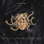 Cover: Phuture Noize - Walls Crashin' Down