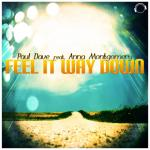Cover: Paul Dave feat. Anna Montgomery - Feel It Way Down (RainDropz! Remix)
