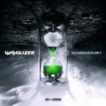 Cover: Wavolizer - Brotherhood