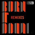 Cover: LNY TNZ - Burn It Down (The Un4given Remix)