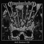 Cover: Counterstrike - Demon Core