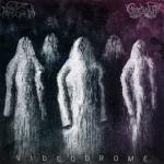 Cover: Code: Pandorum - The Grail